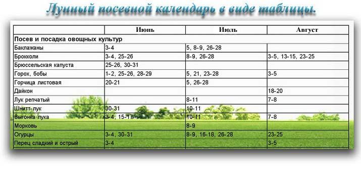 Лунный посевной календарь в виде таблицы